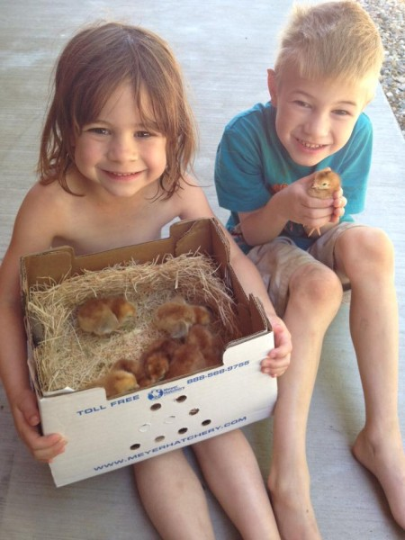 Chick-Day1-Kids